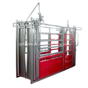 High Quality Powder Coated Cattle Chute pictures & photos