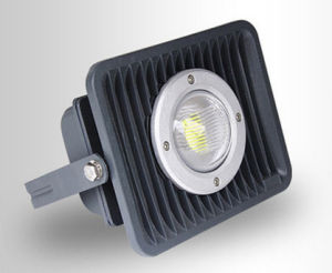 30W/60W/100W IP65 LED Floodlight for Outdoor/Square/Garden Lighting (LNF101) pictures & photos
