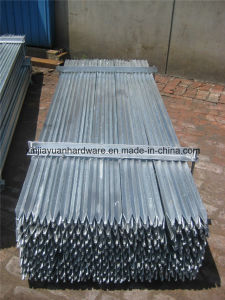 Black Painted Y Star Picket for Australia Market pictures & photos