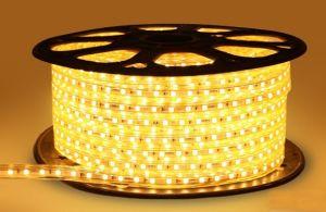 LED Strips 110V SMD Lights LED Strip Light pictures & photos