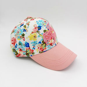100% Cotton Embroidery Wholesale Custombaseball Cap (US013-02) pictures & photos