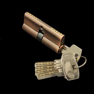 60mm Brass Lock Cylinder High Quanlity Door Lock pictures & photos