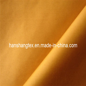 240t Polyester Pongee (HS-018)