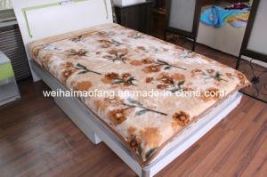 Korean Warp Knitted Raschel Mink 100%Acrylic Blanket pictures & photos