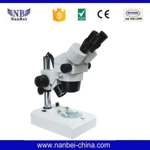 Xtl-400 of China Prices of Lab Light Microscope pictures & photos