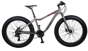 Light Weight Alloy Fat Tire Bike with Shimano Derailluer