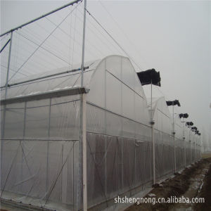 Greenhouses for Agriculture Used/Shading Net/Green Sun Shade Net