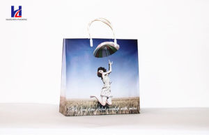 The Promotion Non-Woven Shopping Bag pictures & photos