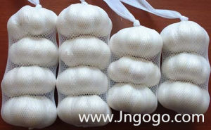 New Crop Good Quality Normal White Garlic 5.0 pictures & photos