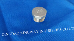 Stainless Steel Threaded Plug pictures & photos