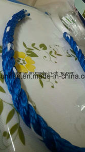 PP Rope/Polypropylene Rope/Rope pictures & photos
