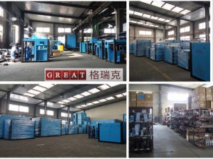 Permanent Magnetic Variable Frequency Screw Air Compressor Pump pictures & photos