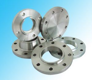 DIN Forged Flanges Ring Finish Machined pictures & photos