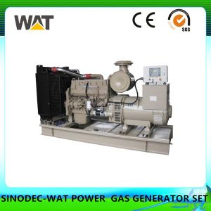Electrical Generating Set Small Power Natural Gas Generator Set pictures & photos