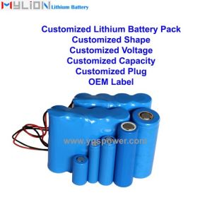 Hight Quality Lithium Battery for Medical Instrument Respirator etc.
