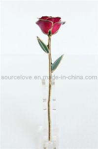 Gift-24k Gold Rose (MG032)