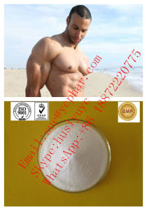 Bodybuilding Raw Testosteron Powder Anabolic Hormones Steroids Testosteron Base Test pictures & photos