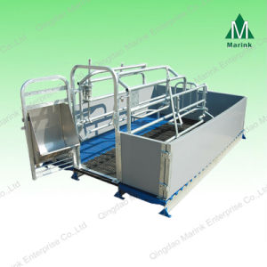 Hot Sell Pig Farrowing Crate /Pig Crate for Sow pictures & photos