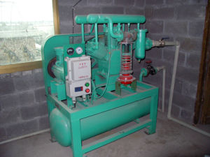 High Pressure Marsh Compressor Methane Compressor Biogas Compressor (Zw-1.1/0.6-9) pictures & photos