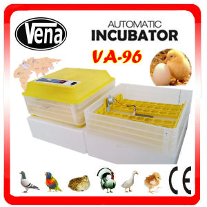 Large Supply 96 Eggs Automatic Hatching Fish Incubator pictures & photos