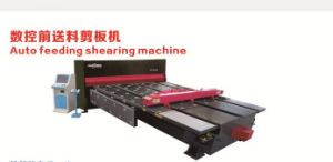 Auto Feeding Shearing Machine D-Jc25/Jc35 pictures & photos