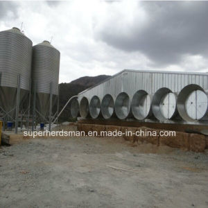 Professional Chicken House Design and Construction with Steel Structure pictures & photos