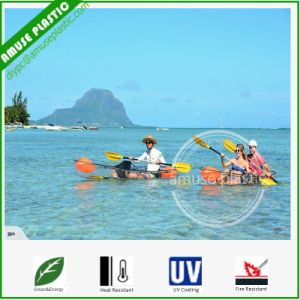 Entertainment Sea Kayak Clear Plastic Canoes for Sale Thailand pictures & photos