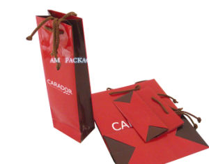Customized Shopping Paper Bag/Luxury Paper Bag pictures & photos