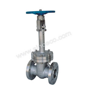 ANSI Flanged Cryogenic Gate Valve pictures & photos