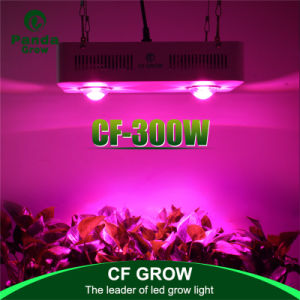 300W 600W COB Indoor Full Spectrum LED Grow Lights pictures & photos