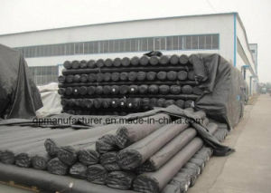 Filter Fabric Non Woven Needle Punched Fabric Black/White Geotextile pictures & photos