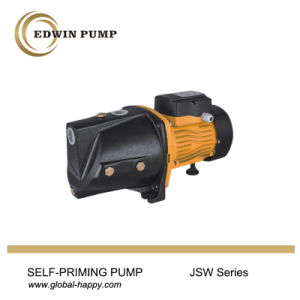 Household Self-Priming Jet Water Pump pictures & photos