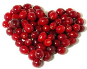 Cranberry Extract With25%Anthocyanosides for Food Supplement pictures & photos