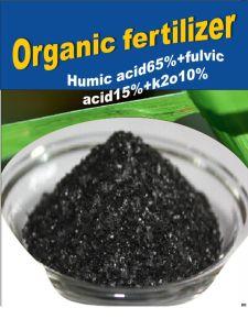 Soil Conditioner Humic Acid Granular Price pictures & photos