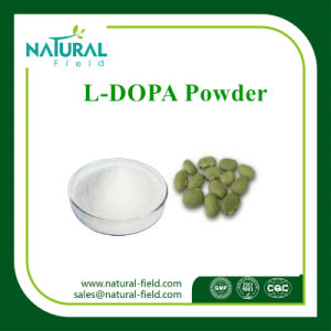 Mucuna Pruriens Extract, L-Dopa, Levodopa CAS: 59-92-7 Plant Extract pictures & photos