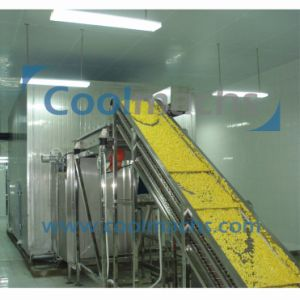 Cut Fruit and Vegetable Fluidized IQF Quick Freezer pictures & photos