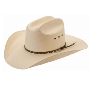 Nature Straw Cowboy Hat pictures & photos