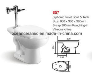 Sc-070 Soft Closing Toilet Seat for Public Toilet Bowl pictures & photos