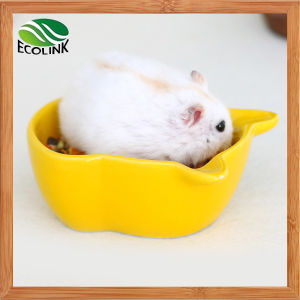 Hamster Pattern Solid Yellow Green Style Hamsters Habitat Ceramics Toys Water Food Pot pictures & photos