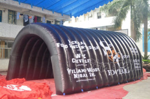 High Quality Outdoor Inflatable Tunnel for Match pictures & photos