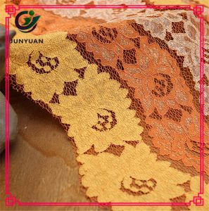High Quality French Lace Dress Fabric pictures & photos