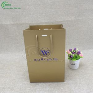Promotional Shopping Bag with Custom Logo (KG-PB064) pictures & photos