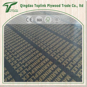 Film Faced Plywood/ Constuction Material pictures & photos
