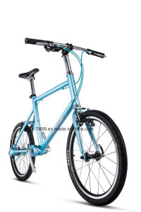 20′′ Simple Shaft Drive Bike Fashion Road Bike pictures & photos