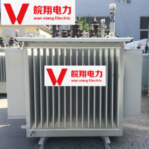 Oil-Immersed Transformer/ High Voltage Transformer pictures & photos