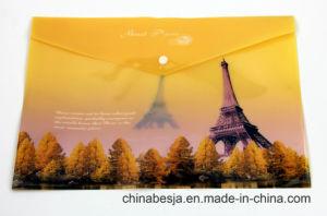 Bj-1043 Offset Print File Bag, China File Bag, China File Folder, China Documents File, Expanding File pictures & photos