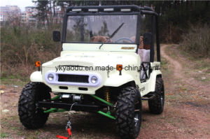 2017 New Type 250cc Mini ATV for Adults pictures & photos