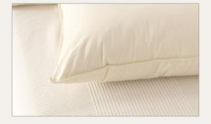 233 Tc Teflon Treatment Goose Down Pillow for Hotel pictures & photos