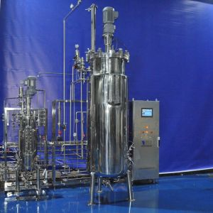 50 Liters 500 Liters Duplex Fermenter pictures & photos