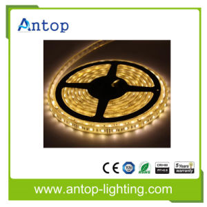 IP65 SMD5730 60LED 10mm 12V 30W White LED Flexible Strip pictures & photos